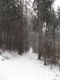 Mittelweg_Viehleite_klein