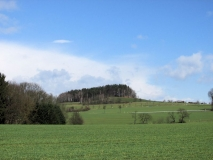 Blick_Panoramaweg_Adamsberg_klein