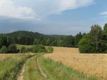 Folgenweg_bei_Altendorf_klein