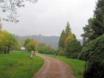herbstlicher_Rhododendrongarten_Rathen_klein