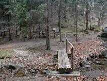 Kletterfelsenweg_im_Duerrebielagrund_klein