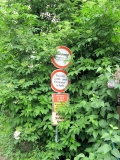 Schilderbaum_Porschdorf_klein