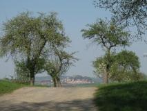 Burg_Stolpen_ueber_Kuppe_klein