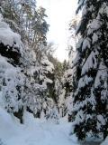 winterliche_Schwedenloecher_Bastei_klein