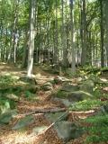 Gipfel_Hausberg_klein