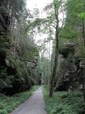 Waldstrasse_im_Grossen_Zschand_klein