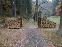 Wegbreitenbegrenzung_Hinterhermsdorf_2