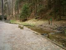 Wassertreten_Gruenbach_klein