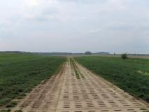 Landebahn_Alter_Flughafen_Langenwolmsdorf_klein
