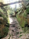 Felsendurchgang_mit_Stufen_zum_Karlshaus_klein