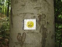 lustiges_gelbe_Wanderwegmarkierung_klein