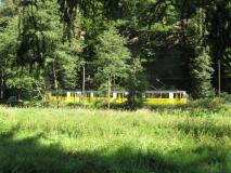 Strassenbahn_im_Kirnitzschtal_klein