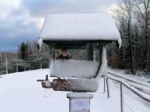 winterliches_Schild_Schaeferraeumicht_klein