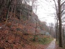 Steinschlagschutz_Kirnitzschtal_klein