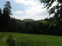 Raumberg_von_Wildwiese_klein