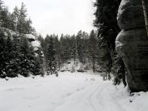 winterliche_Quenenwiese_klein