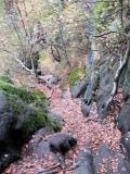 Abstieg_Rotkehlchenstiege_oben_im_Herbst_klein