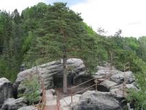 Gipfel_Schauenstein_klein