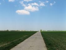 Betonpaltten_Feldweg_Richtung_Ehrenberg_klein