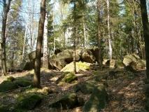 Wolfstein_klein