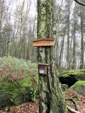 Gipfelbuch_Hartenstein_klein
