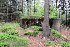 Bunker_Nr_2_Schoeberlinie_klein