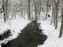 winterlicher_Schwarzbach_klein
