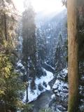 Kirnitzschtal_vor_der_Schleuse_im_Winter_klein