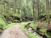 Weg_durch_das_Wolfsbachtal_klein