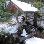 Quelle_mit_besonderer_Wasserfuehrung_klein