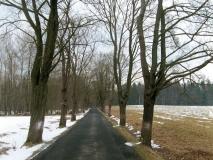 winterlicher_Zufahrt_Stimmersdorf_klein