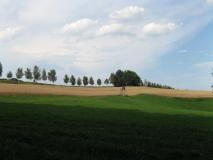 Gipfel_Schirm_bei_Ulbersdorf_klein