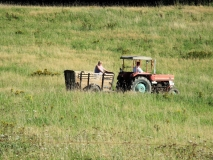 Traktorgespann_am_Hankehuebel_klein