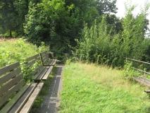 zugewucherte_Aussicht_Canalettoweg_klein