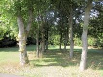 ehemaliger_Friedhof_Adolfsgruen_klein