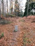 Grenzweg_mit_Grenzsteinen_klein