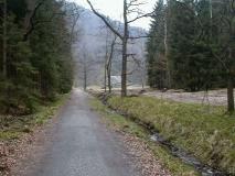 Forstweg_Zeughaus