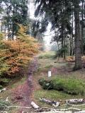 Grenzsteine_am_Fremdenweg_klein