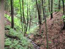 Granitschlucht_Mittelndorf_klein