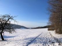 Blick_vom_winterlicher_Dr_Alfred_Meiche_Weg_klein