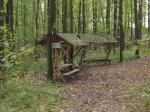 Waldklassenzimmer_Buschholz_klein