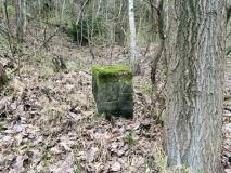 Steinbruchnummer_294_Herrenleite_klein