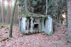 Bunker_mit_Kiefer_auf_dem_Dach_klein