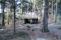 erster_Bunker_Schoeberlinie_bei_Elbleiten_klein