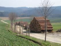 Holzstapel_vor_Lichtenhain_klein