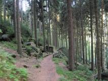 Wanderweg_Richtung_Belvedere_klein