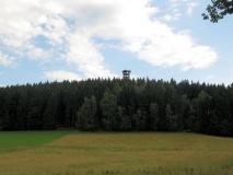 Wald_und_Spitze_vom_Weifbergturm_klein