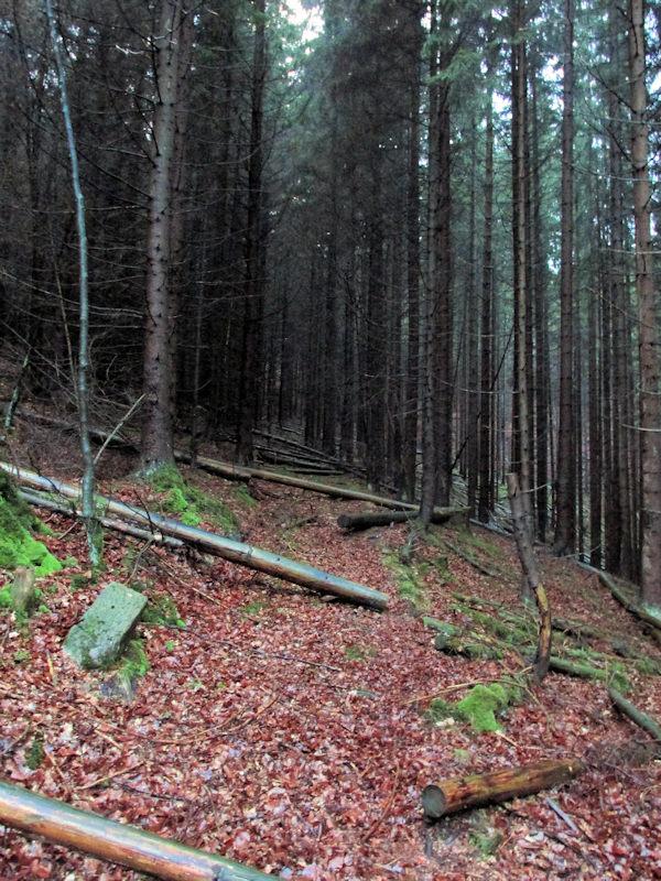 Faehrgruendel_klein