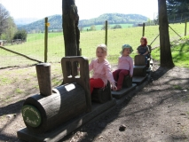 Holzwaldbahn_Berndi_klein