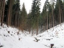 Granit_Kohlichtgraben_klein